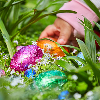 Easter extravaganza create the perfect easter egg hunt kmart choctastic eggs negle Gallery