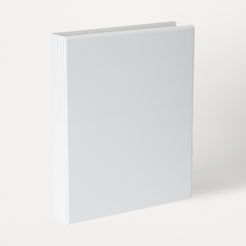 2D Ring Insert Binder
