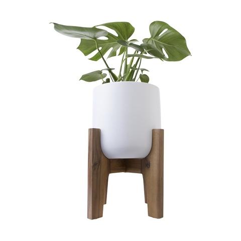 Pot With Acacia Stand Kmart