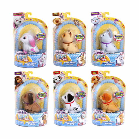 Little Live Pets Sweet Talkin' Pets - Assorted