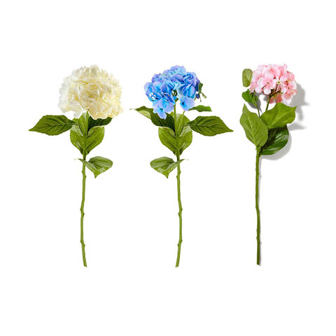 Single Stem Hydrangea - Assorted