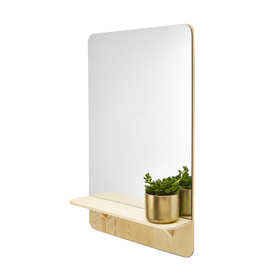 Mirror with Wood Shelf