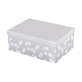 Spot Gift Box - Medium, Metallic
