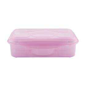 5 Section Container - Pink