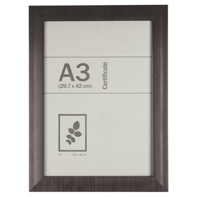 Certificate Frame - A3, Silver